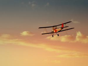 tiger-moth-sundowner.jpg